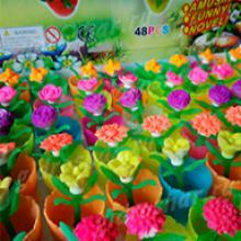Растущие в воде цветы, 24 шт