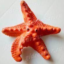 Растущая в воде Морская звезда, 1 шт