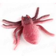 Растущий в воде паук коричневый с черным, 1 шт