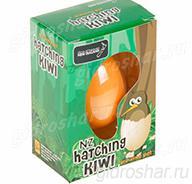 Яйцо с растущей в воде Птичкой Киви 10,5х7,5х5 см, 1 шт